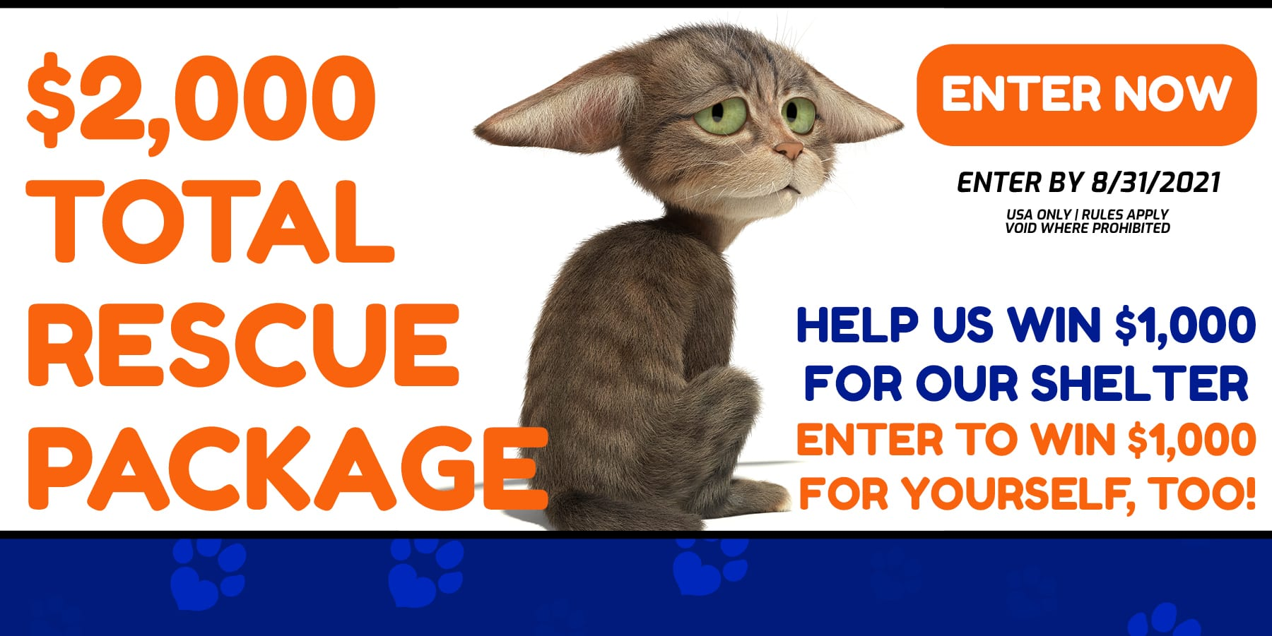 adopt a pet cat kitten rescue package
