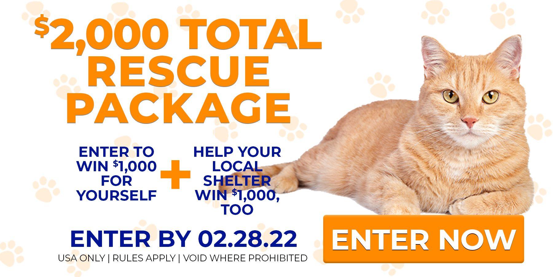 cat rescue near me charitable donation usa