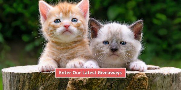 pet giveaways